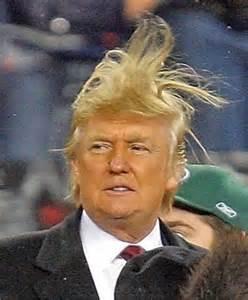trumps-hair